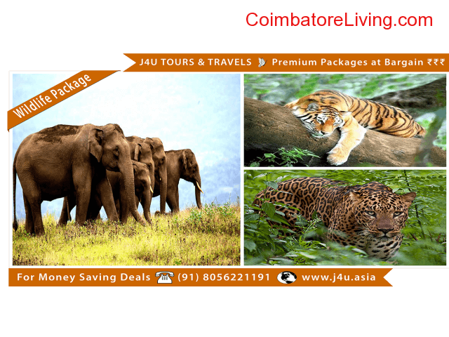 coimbatore - Premium Holiday Packages for Bargain Price - J4U Tours and Travels - 6/6