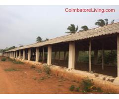 6000 sq ft shed for rent for poultry farming suitable