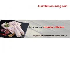 Fresh Country Chicken meat & Egg home delivery