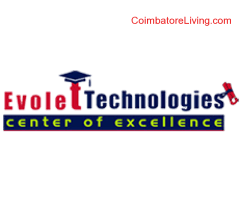 Evolet technologies hires graduates,freshers,final years for Digital marketing internship