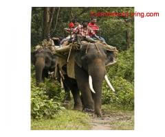 2days 1night Package Tour Topslip Parambikulam & Valparai