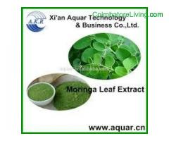Kosher Certified Moringa Leaf Powder - Organic Manufacturing Process