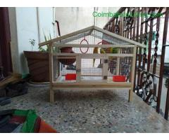 coimbatore - Cage for sale all place transport available - Image 2/2