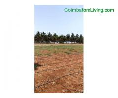 coimbatore - 40Aker dry agriculture Land sale pollachi to Dharapuram road Dasarapitt