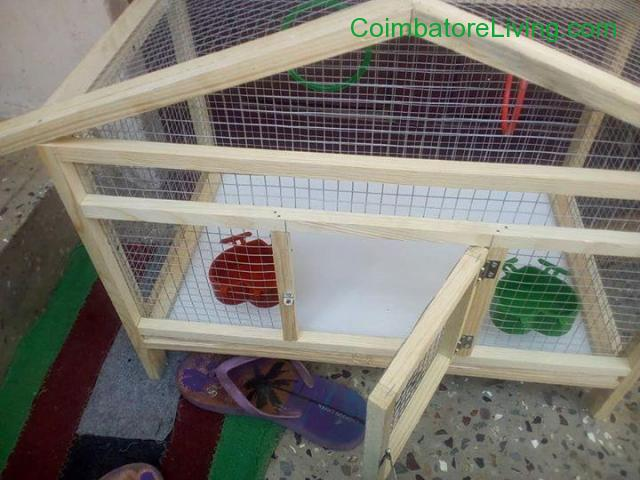 coimbatore - Cage for sale - 2/4
