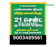 coimbatore - Excellent agriculture land for sale