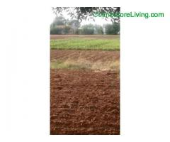 coimbatore -4aker agriculture Land sale