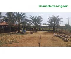 coimbatore -Agricultural land 5acare sell
