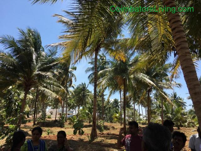 coimbatore - DTCP SITES for sale in SARAVANAMPATTY - 1/1