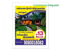coimbatore -Farm land For Sale