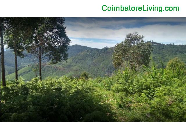 coimbatore - DTCP approved Residential Plots for sale at Kodaikanal - 1/49