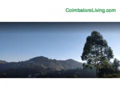 coimbatore - DTCP approved Residential Plots for sale at Kodaikanal - Image 7/49