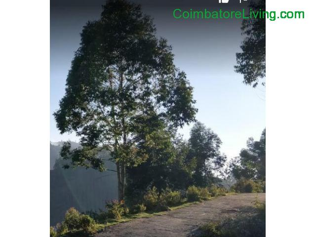 coimbatore - DTCP approved Residential Plots for sale at Kodaikanal - 8/49