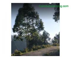 coimbatore - DTCP approved Residential Plots for sale at Kodaikanal - Image 8/49