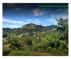 coimbatore - DTCP approved Residential Plots for sale at Kodaikanal - Image 9/49