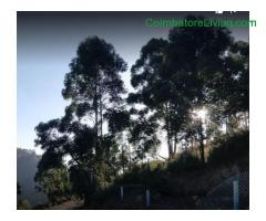 coimbatore - DTCP approved Residential Plots for sale at Kodaikanal - Image 10/49