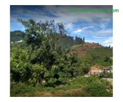 coimbatore - DTCP approved Residential Plots for sale at Kodaikanal - Image 11/49