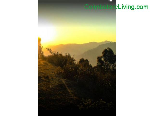 coimbatore - DTCP approved Residential Plots for sale at Kodaikanal - 13/49