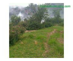 coimbatore - DTCP approved Residential Plots for sale at Kodaikanal - Image 18/49