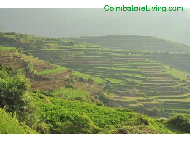 coimbatore - DTCP approved Residential Plots for sale at Kodaikanal - 21/49