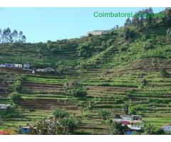 coimbatore - DTCP approved Residential Plots for sale at Kodaikanal - Image 27/49