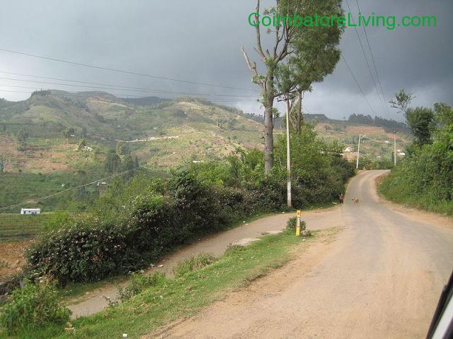 coimbatore - DTCP approved Residential Plots for sale at Kodaikanal - 31/49