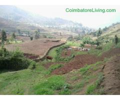 coimbatore - DTCP approved Residential Plots for sale at Kodaikanal - Image 39/49