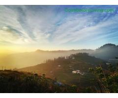 coimbatore - DTCP approved Residential Plots for sale at Kodaikanal - Image 45/49