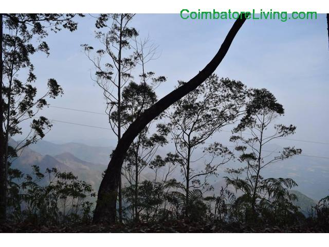 coimbatore - DTCP approved Residential Plots for sale at Kodaikanal - 49/49