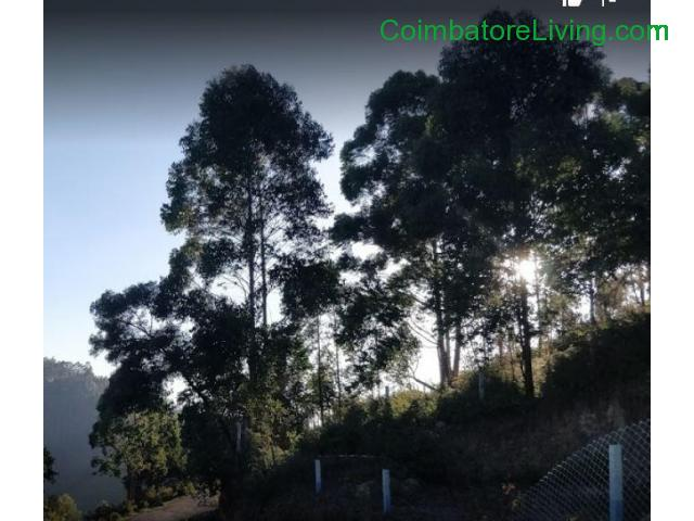 coimbatore - DTCP approved Residential Plots for sale at Kodaikanal - 10/49