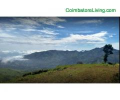 coimbatore - DTCP approved Residential Plots for sale at Kodaikanal - Image 12/49