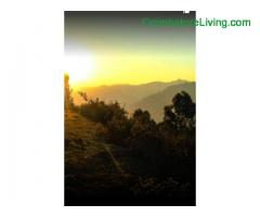 coimbatore - DTCP approved Residential Plots for sale at Kodaikanal - Image 13/49