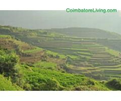 coimbatore - DTCP approved Residential Plots for sale at Kodaikanal - Image 21/49