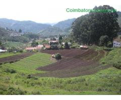coimbatore - DTCP approved Residential Plots for sale at Kodaikanal - Image 22/49