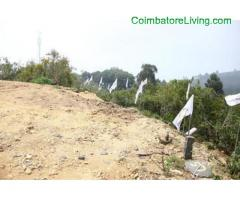 coimbatore - DTCP approved Residential Plots for sale at Kodaikanal - Image 24/49