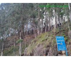 coimbatore - DTCP approved Residential Plots for sale at Kodaikanal - Image 36/49