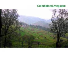 coimbatore - DTCP approved Residential Plots for sale at Kodaikanal - Image 40/49