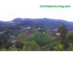 coimbatore - DTCP approved Residential Plots for sale at Kodaikanal - Image 43/49